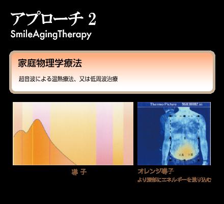 アプローチ2:家庭物理学療法